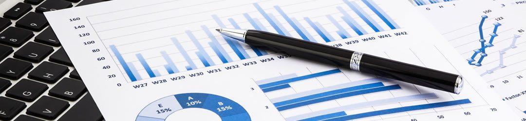 Program de Masterat - Bancas -
